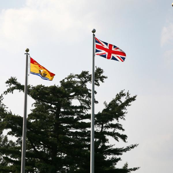 4 catarge cu steaguri
