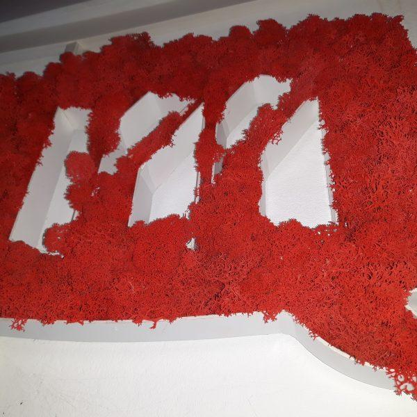 Reclamă neluminoasă cu licheni 5