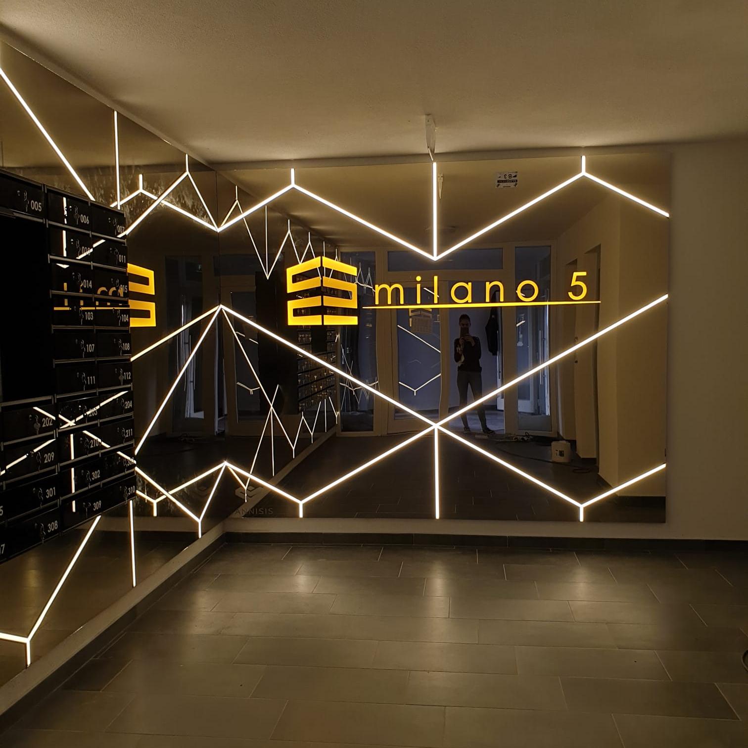 Acces hol lift - Milano5